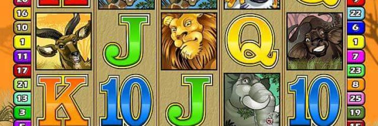 JackpotCity Casino und der Progressive Mega Moolah Videospielautomat